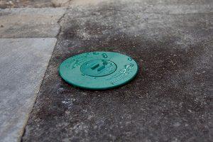 IMG 0868 300x200 - Dedetizadora de Cupins em Jundiaí
