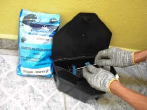 desratização 21 Copia 300x225 - Dedetizadora de Rato em Jundiaí